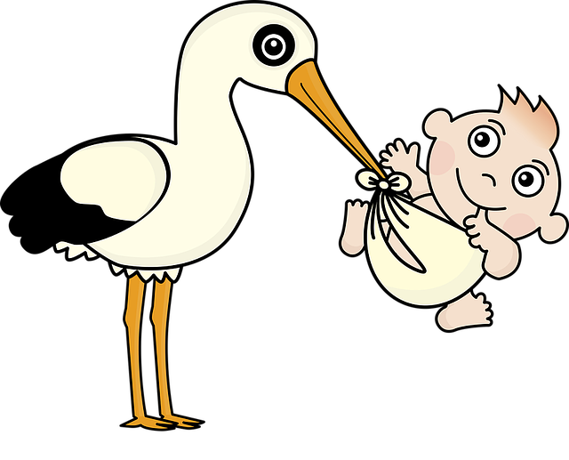 Tale of Storks
